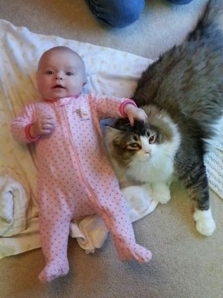 Zeus loves Livi