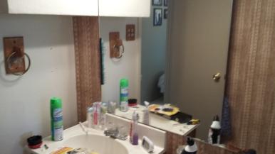 Before Bathroom