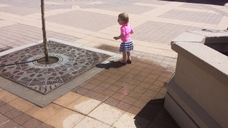 Playing in a puddle and ignoring the sidewalk geysers nearby.